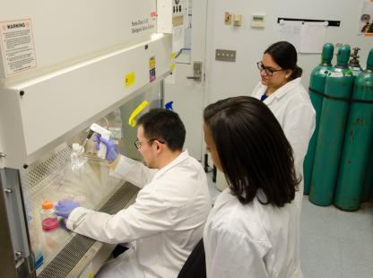 Ph.D. Biomedical Engineering