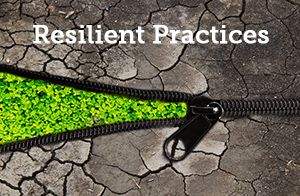 resilient-practices